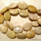 Natural 20mm long x 15mm wide FOSSIL Oval CORAL (5 Loose JUMBO Beads) A+