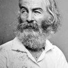 New 5x7 Photo: Poet and Essayist Walt Whitman