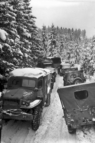 New 5x7 World War II Photo: 87th Infantry Military Vehicles in Wallerode Woods