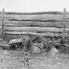 New 5x7 Civil War Photo: Dead of the Stonewall Brigade, Antietam - Sharpsburg