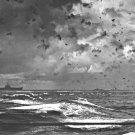New 5x7 World War II Photo: Aircraft Carrier under Attack, Battle of Santa Cruz