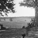 New 5x7 Civil War Photo: Cedar Mountain Battlefield in Virginia, 1862