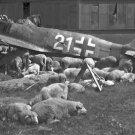 New 5x7 World War II Photo: Wrecked Airplane after the War in Nuremberg, 1946