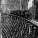 New 5x7 Photo: Steam Engine on Trestle Bridge, 1913
