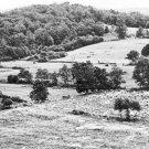 New 5x7 Civil War Photo: Culps Hill on Gettysburg Battlefield, 1923