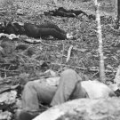 New 5x7 Civil War Photo: Little Round Top Dead after Battle of Gettysburg