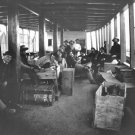 New 5x7 Civil War Photo: Men Between Decks on an Army Transport Vessel