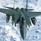 New 5x7 Military Photo: F-15E Strike Eagle Patrol over Northern Iraq, 1999