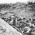 New 5x7 Civil War Photo: Casualties in Ditch at Antietam - Sharpsburg Battle
