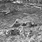New 5x7 Civil War Photo: Dead Confederates on Antietam - Sharpsburg Battlefield