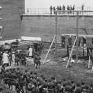 New 4x6 Photo: Hanged Bodies of the Lincoln Conspirators after Execution