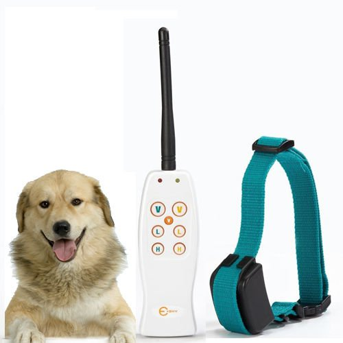 000yard Rechargeable Waterproof Remote Dog Training Shock Collar Adjustable