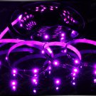 Pink 5m 3528 5050 SMD LED 600 LEDS Waterproof Flexible Light Strip Roll12V