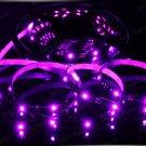 Pink 5m 3528 5050 SMD LED 300 LEDS Waterproof Flexible Light Strip Roll12V
