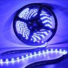 Blue 5m 16ft Roll 3528 SMD LED 300 LEDs Flexible Waterproof Light Strip12V