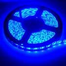 Blue Waterproof 5050 SMD 300LED 5M 60LED-M Light Strip Lamp Car Flexible 12V