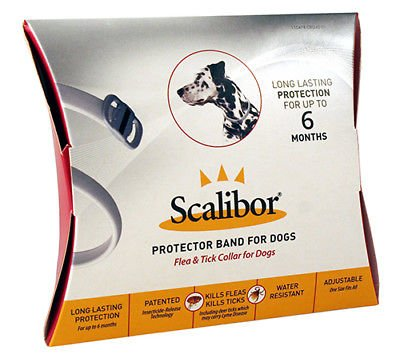 Scalibor Protector Band for Dogs Flea & Tick Collar 6mo