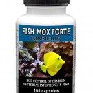Antibiotics Amoxicillin Fish Mox Forte 500mg 100 Capsules
