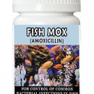 Antibiotics Amoxicillin Fish Mox Forte 250mg 12 Capsules