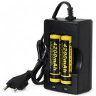 18650 3.7V 4200mAh Li-ion Rechargeable Battery with Protection Board (2-Pack)