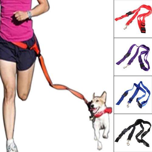 Nylon Dog Leash Rope Training Slip Lead Strap Adjustable Traction Collar (color black