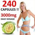 GARCINIA CAMBOGIA CAPSULES HCA 62.1% DIET ORGANIC WEIGHT LOSS