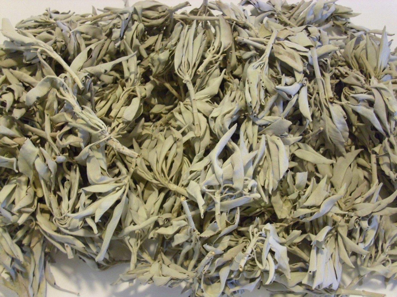 California White Sage Smudge Loose Cluster Incense Bulk (1/2 Pound)   VW1