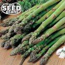 Mary Washington Asparagus Seeds -50 SEEDS NON-GMO