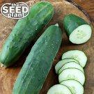Straight Eight Cucumber Seeds - 50 SEEDS NON-GMO