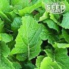 Florida Broadleaf Mustard Seeds - 250 SEEDS NON-GMO