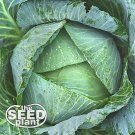 All Seasons Cabbage Seeds -250 SEEDS NON-GMO