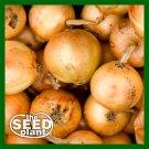 Granex Yellow Onion Seeds - 150 SEEDS NON-GMO