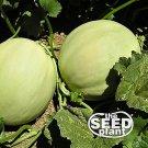 Honeydew Melon Seeds 50 SEEDS NON-GMO