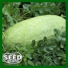 Charleston Grey Watermelon Seeds - 10 SEEDS