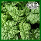 Bloomsdale Spinach Seeds - 50 SEEDS