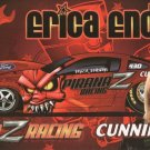 2010 PS Handout Erica Enders wm