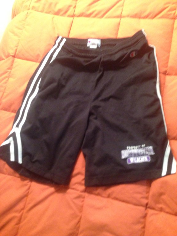 Champion northwestern university gym shorts size M