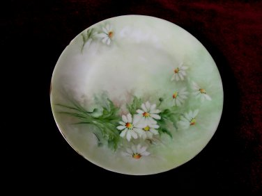Hutschenreuther Gelb LHS China Floral Bavaria Germany