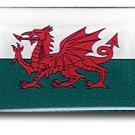 Wales Mini Domed Sticker