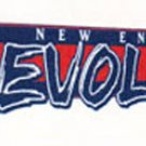 New England Revolution Wall Decal