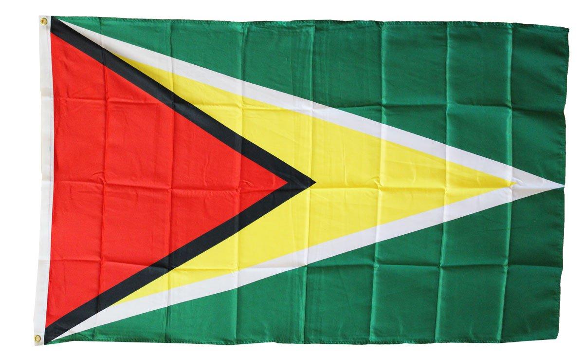 Guyana - 3'X5' Polyester Flag