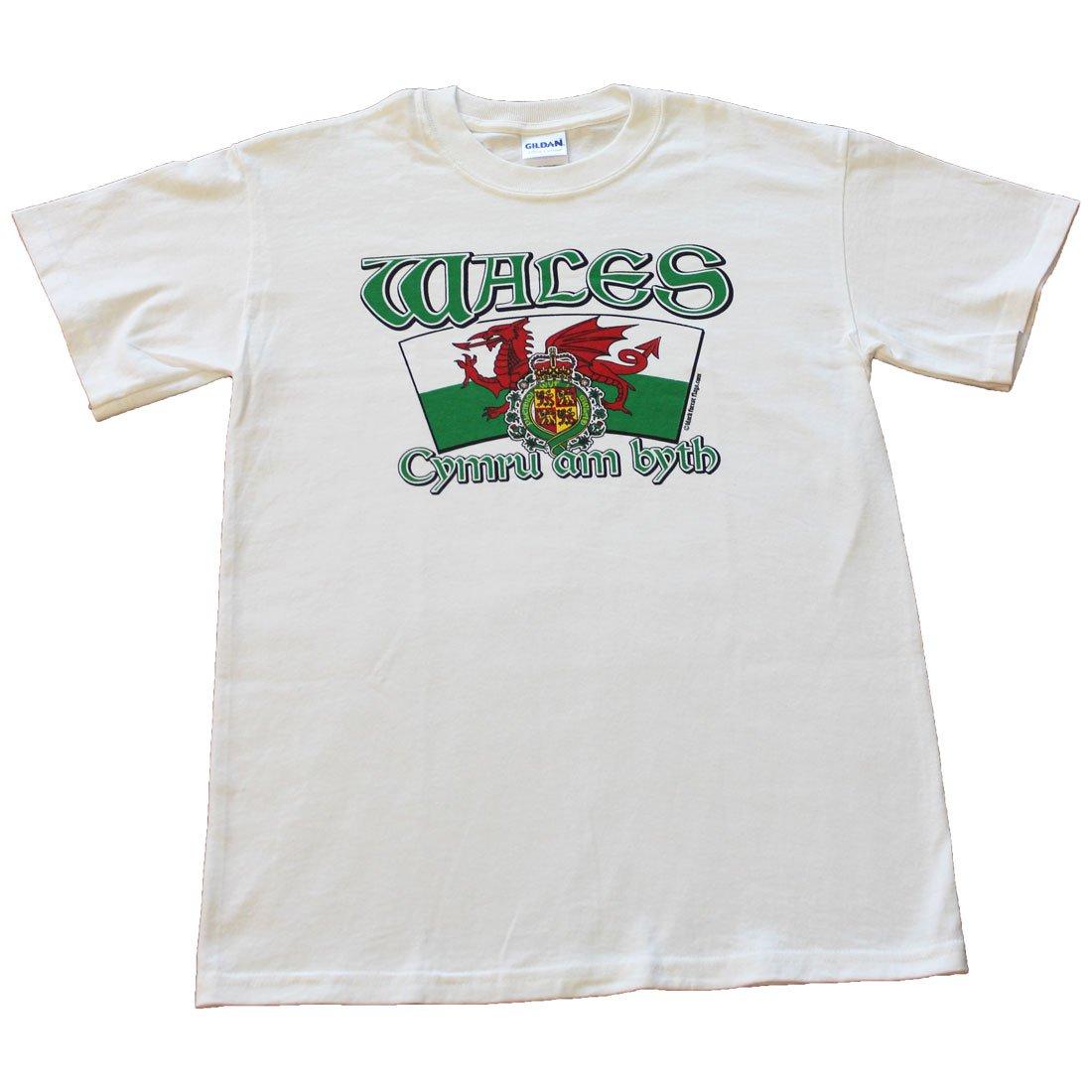 Wales International T-Shirt (L)