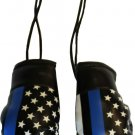 Thin Blue Line (USA) Mini Boxing Gloves