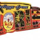 Florida Acrylic Postcard Magnet