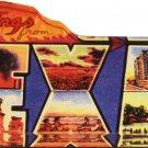 Texas Acrylic Postcard Magnet