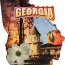 Georgia Acrylic Scenic Magnet