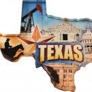 Texas Acrylic Scenic Magnet