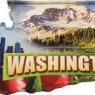 Washington Acrylic Scenic Magnet