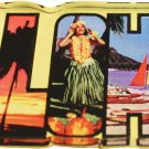 Hawaii Acrylic Postcard Magnet