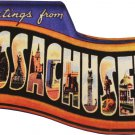 Massachusetts Acrylic Postcard Magnet